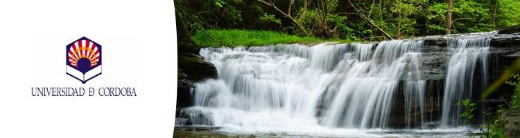 Un método innovador permite capturar plomo y cadmio de ríos y balsas de agua de forma selectiva